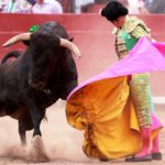 Все о корриде в Испании